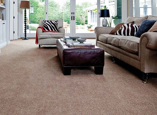 Living room scene with brown Stainmaster carpet